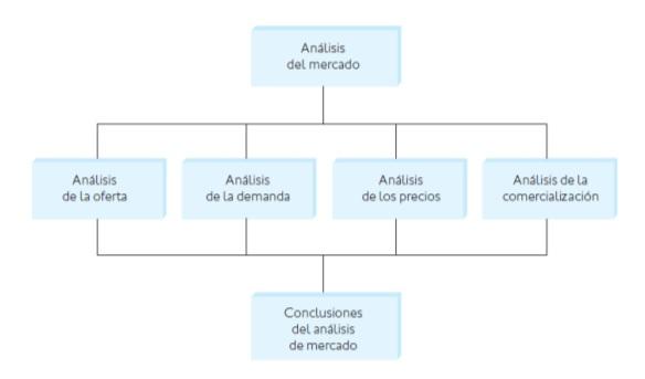 estructuraestudiomercado1